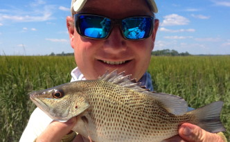 Mangrove Snapper Fishing In Hilton Head